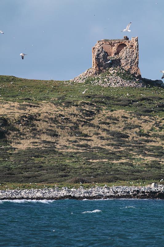 Isola delle femmine Foto Fabio Cilea Photo Gallery